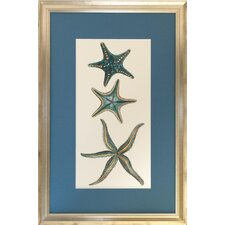 <strong>Indigo Avenue</strong> Seaside Living Aquamarine Starfish I Framed Wall Art