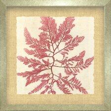 Seaside Living Brilliant I Framed Graphic Art in Seaweed Red
