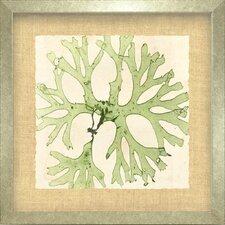 Seaside Living Brilliant III Framed Graphic Art in Seaweed green