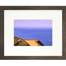 Vibrant Living Soaring Limited Edition Signed Fine Framed Wall Art