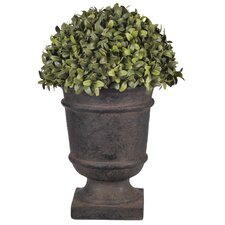 Artificial Half Ball Desk Top Plant in Urn