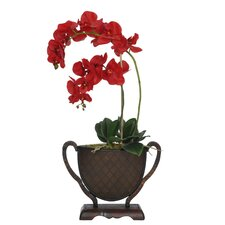 Artificial Double-Drop Phalaenopsis Orchid in Vase