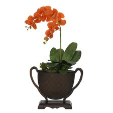 Artificial Double-Stem Phalaenopsis Orchid in Vase