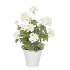 Artificial Geranium in Vase