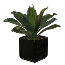 Artificial Agave Succulent Desktop Plant in Planter