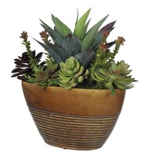 Artificial Succulent Garden in Ridged Oval Ceramic Planter