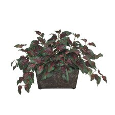 <strong>House of Silk Flowers Inc.</strong> Artificial Coleus Leaf Mini Ledge Desk Top Plant in Metal Planter