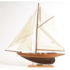 Penduick Model Boat