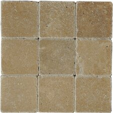 "8"" x 4"" Travertine Tile in Fonce"
