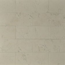 "<strong>The Bella Collection</strong> 8"" x 3"" Marble Tile in Nel Lusso"