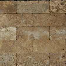 "6"" x 3"" Travertine Tile in Noce"