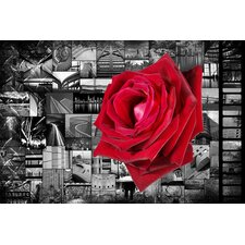 Donovan Kade 'Rose In City' Graphic Art on Canvas