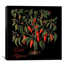 """Chili Peppers"" Canvas Wall Art by Mindy Sommers"