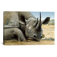 'Black Rhino' by Harro Maass Graphic Art on Canvas