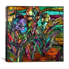 """Candy Coated Irises"" Canvas Wall Art by Mindy Sommers"