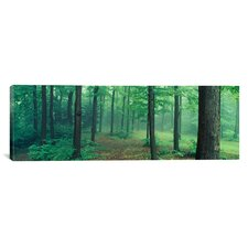Panoramic Chestnut Ridge Park, Orchard Park, New York State Photographic Print on Canvas