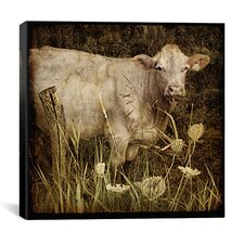 """Charolais"" Canvas Wall Art by Dawne Polis"