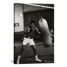 Muhammad Ali Training Photographic Print on Canvas