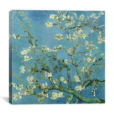 """Almond Blossom"" Canvas Wall Art by Vincent van Gogh"