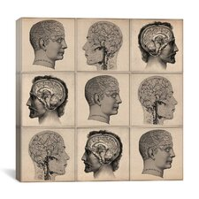 Human Head Anatomy Collage Canvas Wall Art