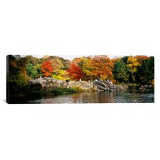 Panoramic Central Park, New York City Photographic Print on Canvas