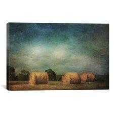 'Hay Rolls' by Dawne Polis Painting Print on Canvas