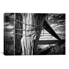 'Holding Strong' by Dan Ballard Photographic Print on Canvas