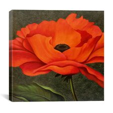 """Red Poppy"" Canvas Wall Art by John Zaccheo"