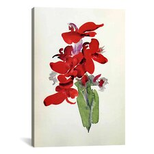 'Red Canna' by Georgia O'Keeffe Graphic Art on Canvas