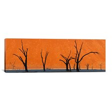 Panoramic 'Dead Trees by Red Sand Dunes, Dead Vlei, Namib-Naukluft National Park, Namibia' Photographic Print on Canvas