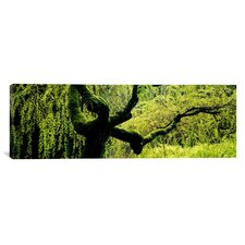 Panoramic Japanese Garden, Portland, Oregon Photographic Print on Canvas