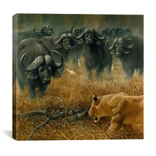 """Lioness and Cape Buffalos"" Canvas Wall Art by Harro Maass"