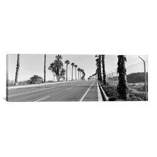 Panoramic 'Palm Trees Along a Road, San Diego, California, USA' Photographic Print on Canvas