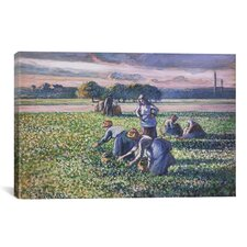 'Picking Peas' by Camille Pissarro Painting Print on Canvas