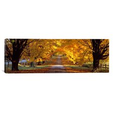 Panoramic Road, Maryland Photographic Print on Canvas