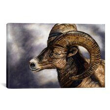 Decorative Art 'Portrait of Desert Bighorn Sheep' by Cory Carlson Painting Print on Canvas