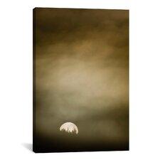 'Wild Moon l' by Dan Ballard Painting Print on Canvas