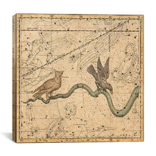Celestial Atlas - Plate 27 (Hydra) by Alexander Jamieson Graphic Art on Canvas in Beige