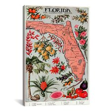 State Map of Florida (Natural Resources) Vintage Advertisement on Canvas