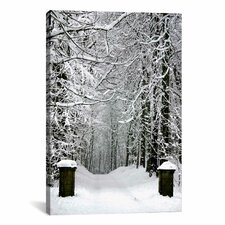 Winter Time Photographic Print on Canvas