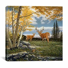 """Woodland Meadows"" Canvas Wall Art by John Van Straalen"