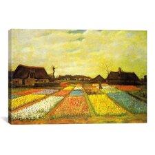 'Tulpenfelder (Tulip Fields)' by Vincent Van Gogh Painting Print on Canvas