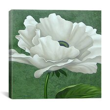 """White Poppy"" Canvas Wall Art by John Zaccheo"