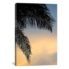 'Sundown Sky' by Harold Silverman - Foilage and Greenery Photographic Print on Canvas