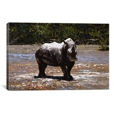 'White Rhino' by Pip McGarry Photographic Print on Canvas