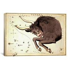 """""""Taurus Constellation ll"""" Canvas Wall Art by Sidney Hall"""