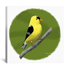 Yellow Finch 12 Canvas Print Wall Art
