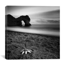 Durdle Feather Canvas Print Wall Art