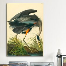 'Great Heron' by John James Audubon Painting Print on Canvas