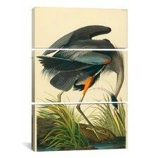 John James Audubon Great Blue Heron 3 Piece on Canvas Set
